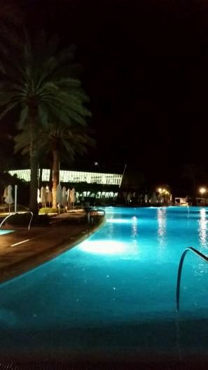 miami-hotel-pool